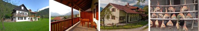 23_Turisticna-kmetija-Pri-Kafolu-Primorska-Poroka