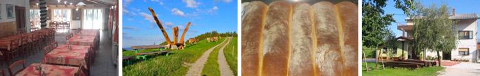 24_Turisticna-kmetija-Siroko-Primorska-Poroka
